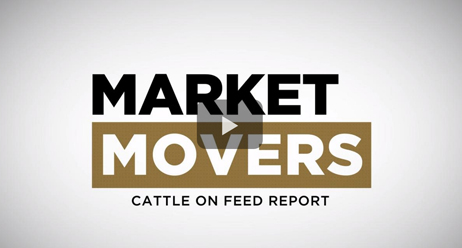 Market-Movers-Cattle-on-Feed-Report_462x248_v1.jpg